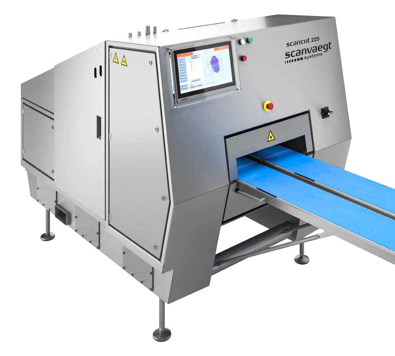 ScanCut 225 PortionCutter 19